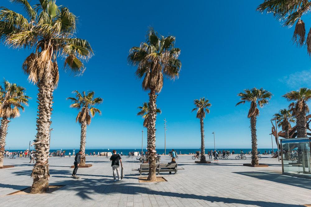 Barcelona-site-5.jpg