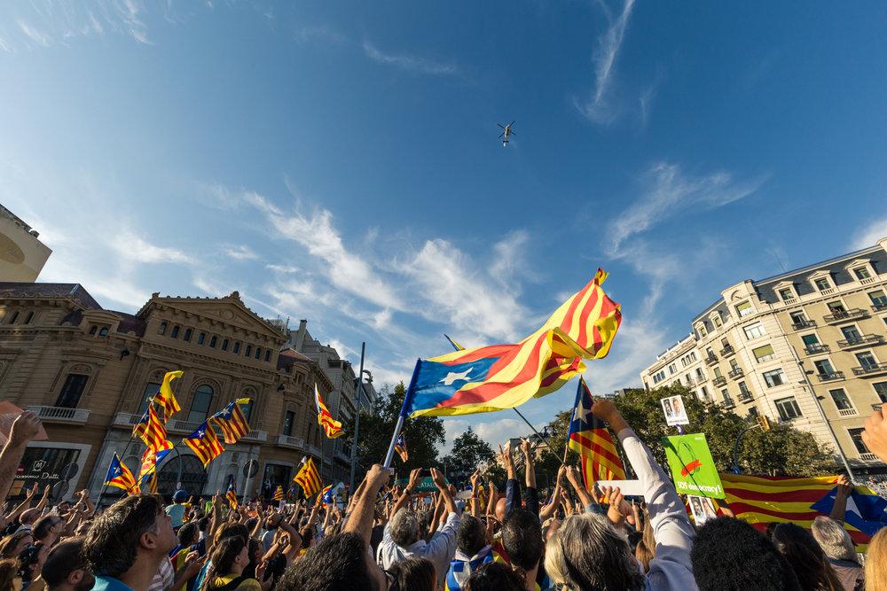 Barcelona-site-12.jpg
