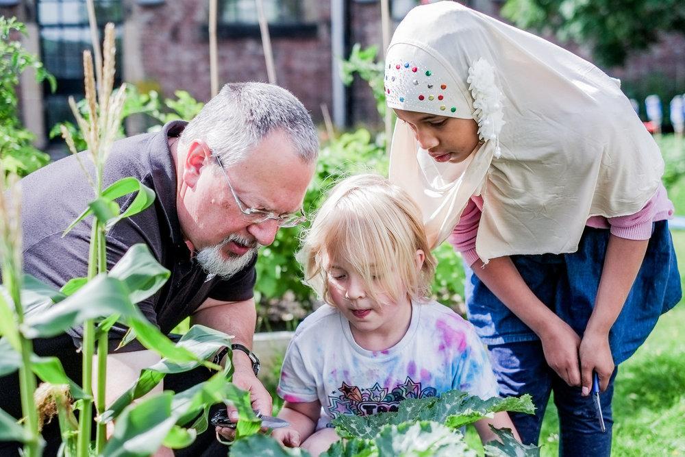 Mima Community Garden