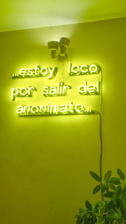 Estoy Loco Por Salir Del Anonimato (I'm Crazy About Leaving Anonymity) (2014)