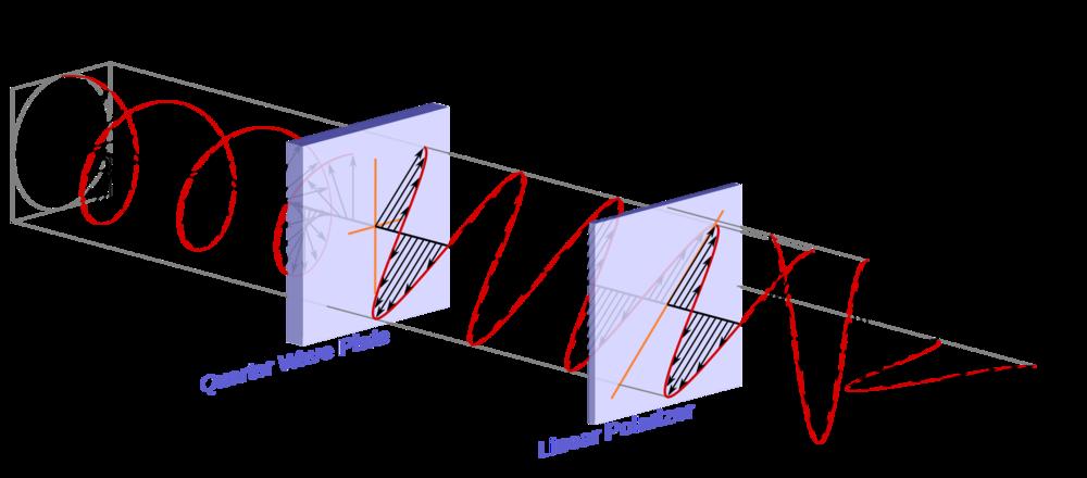 Illustration of how do circular polarizers work