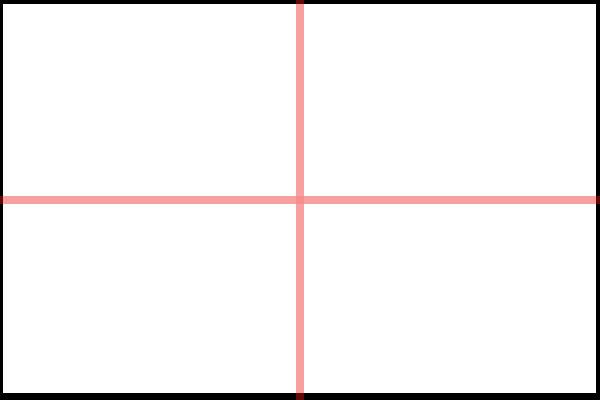 Quadrant Example Cameraplex
