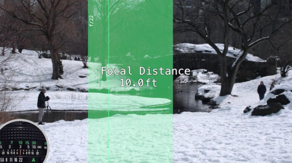 Understanding Depth of Field: How Focal Distance Affects DOF