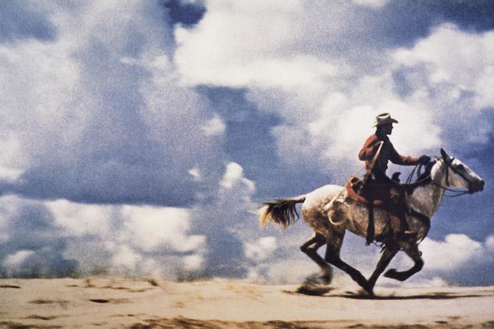Untitled Cowboy Cameraplex