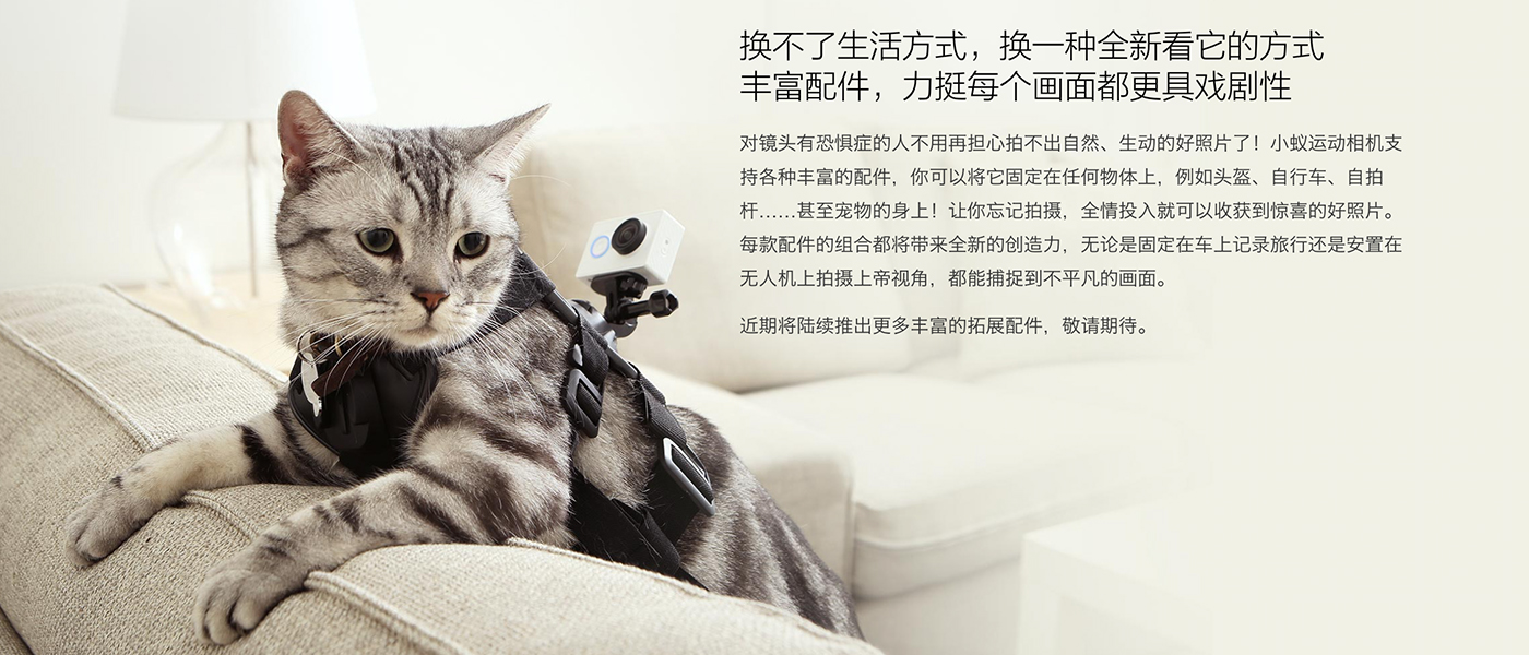 Xiaomi Yi Action Camera on kitty feature banner Cameraplex
