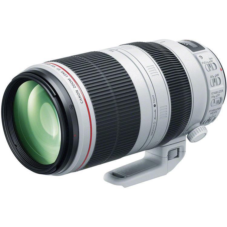 Canon 100-400mm II Cameraplex