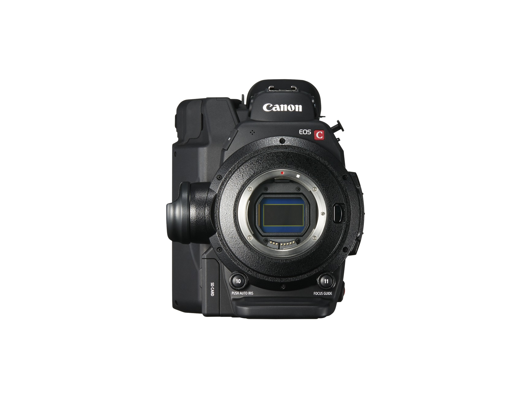 New Canon EOS C300 Mark II sensor