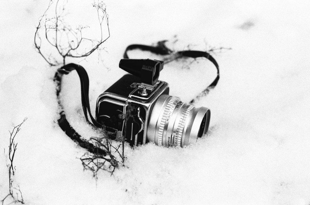 cameraville_santa_rae_1000_bw_film_1.jpg