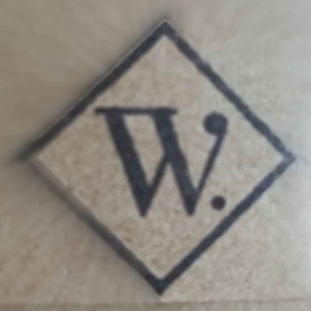 Wrappini - Logo.jpg