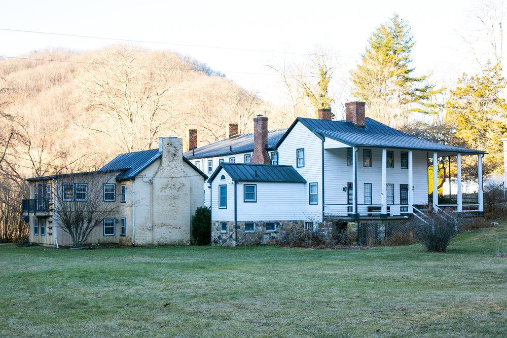 Avi Loren Fox Warm Springs Virginia-7.jpg
