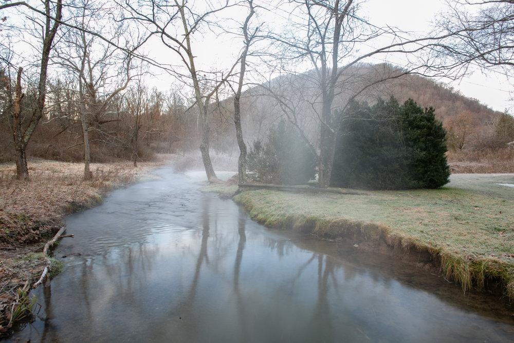 Avi Loren Fox Warm Springs Virginia-20.jpg