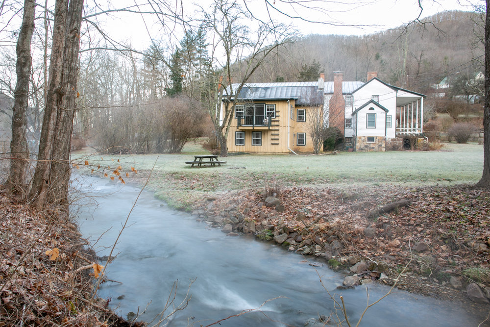 Avi Loren Fox Warm Springs Virginia-21.jpg