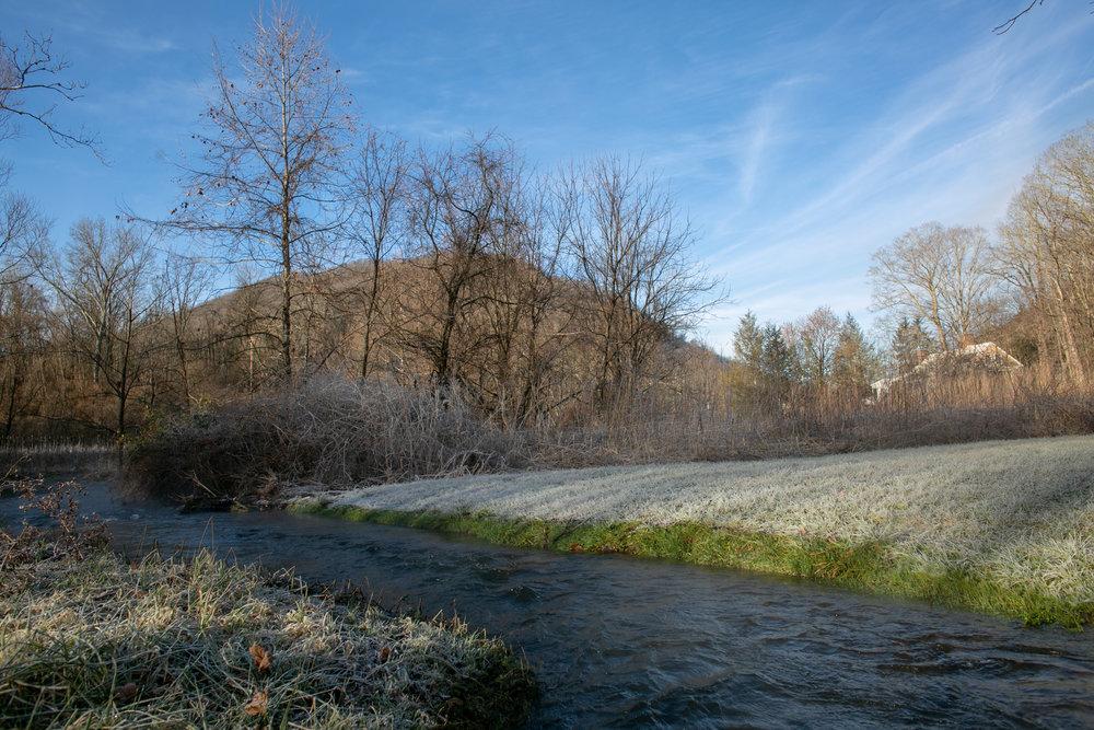 Avi Loren Fox Warm Springs Virginia-23.jpg