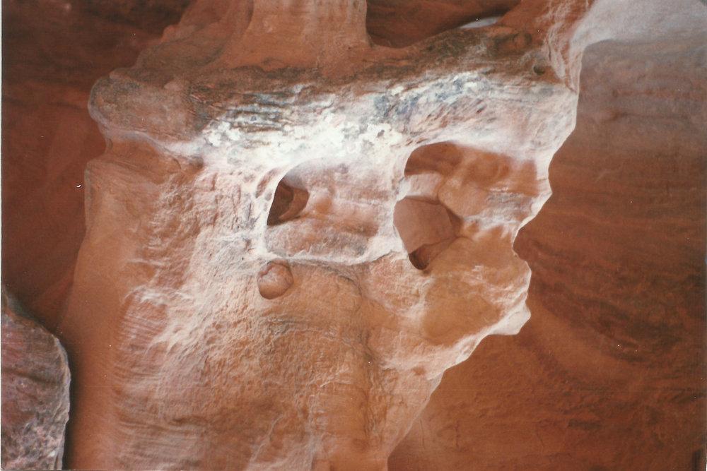 Avi Loren Fox Arches National Park Utah 2005-3.jpg