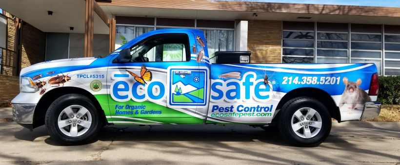 Call Eco-Safe for all of your Eco-Needs!