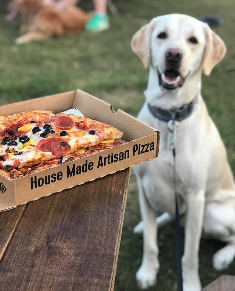 pizza dog.jpg