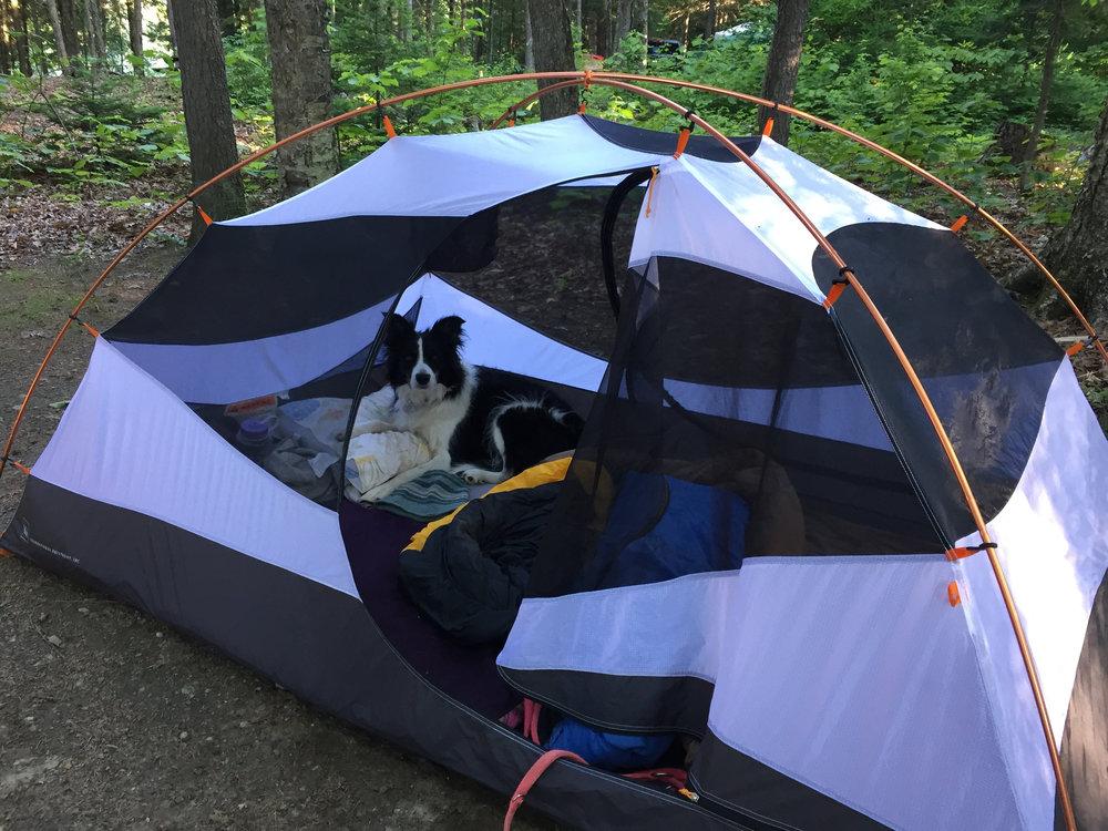 Jill in tent.jpg