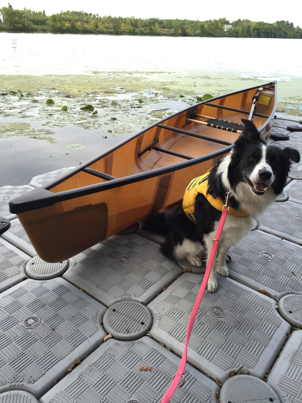 ready to canoe.jpg