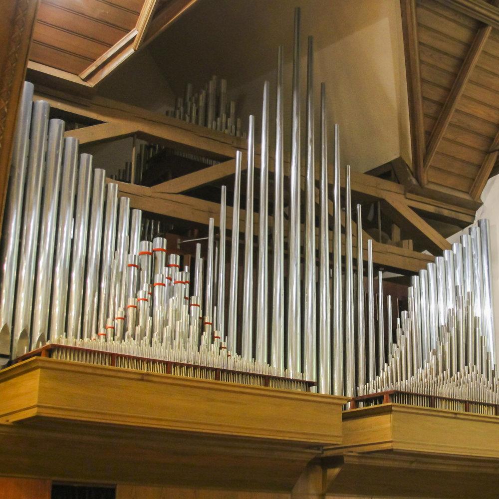 Organ-01.jpg