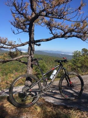 Big Rock in Dupont Forrest.