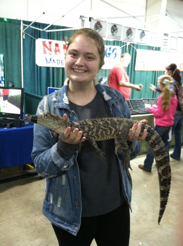 Annabelle loving an alligator.