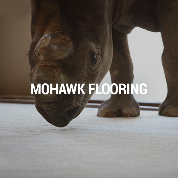 Mohawk2.jpg
