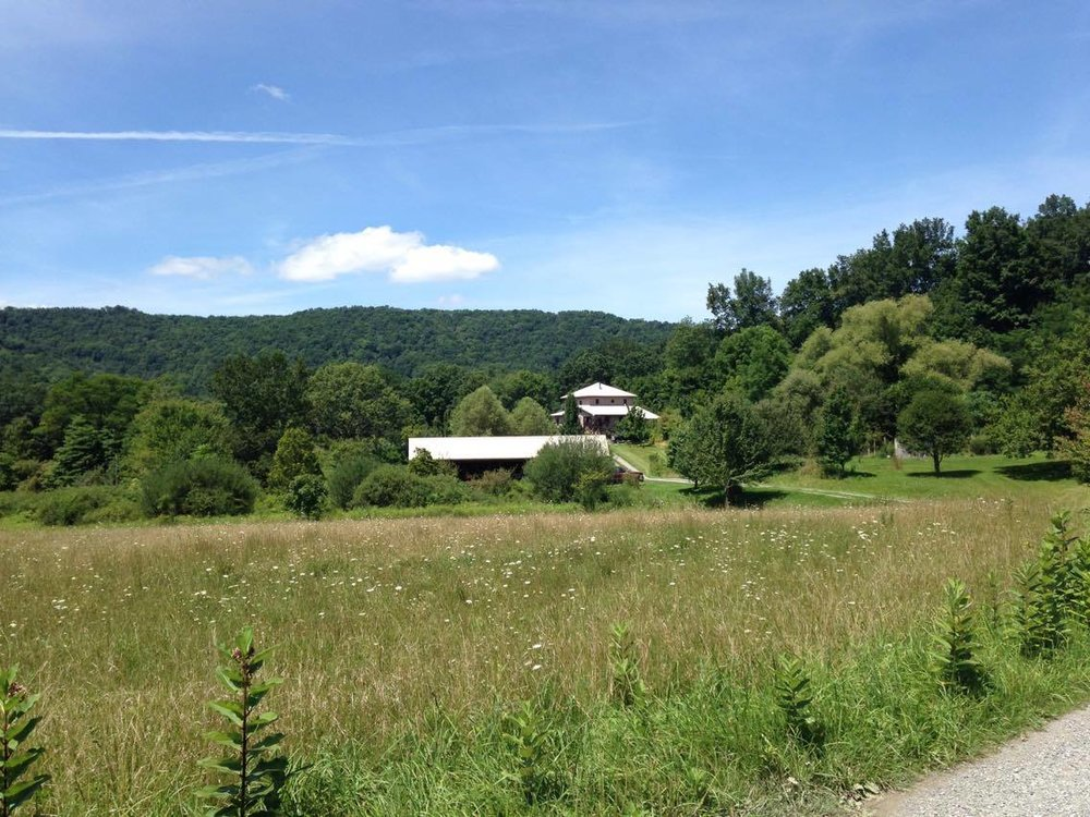 Healthberry Farm is located on an amazing piece of property surrounded by the Monongahela National Forest.