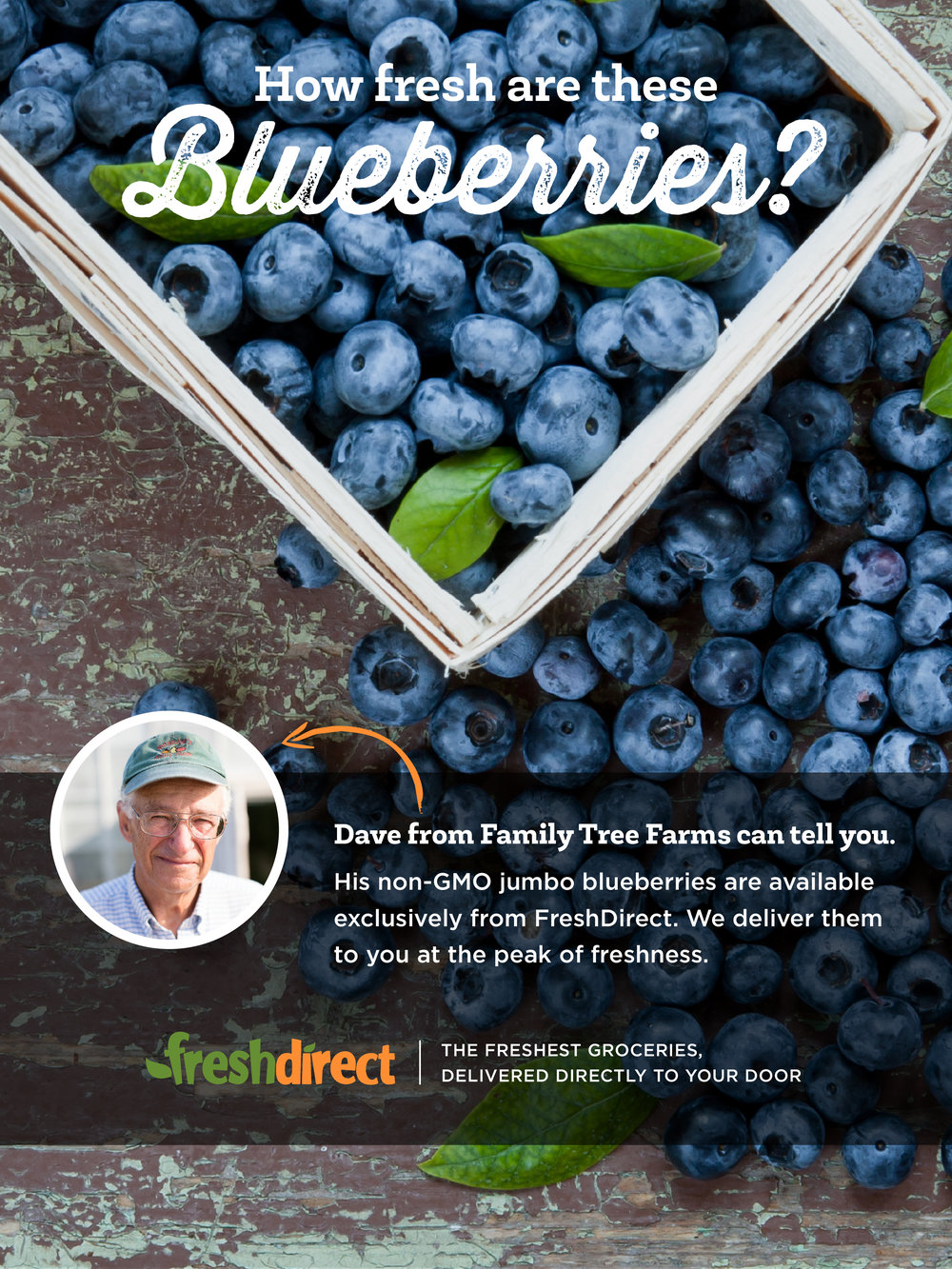 FreshDirect_DC_AdTest_A.jpg
