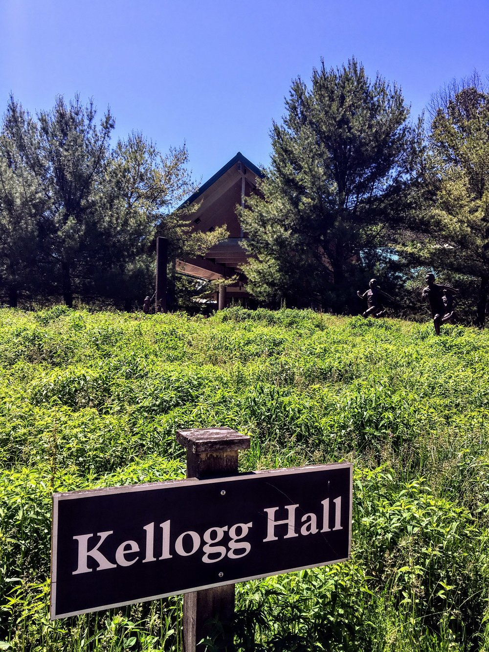 Kellogg Hall, named in honor of W.K. Kellogg II, is where nearly all of our meals  are held.  Downstairs we have our nature room and art studio.