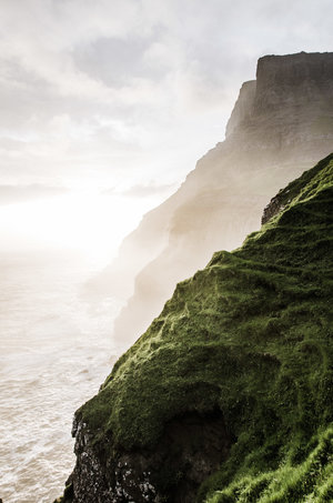 Wandering Trails Media - portland