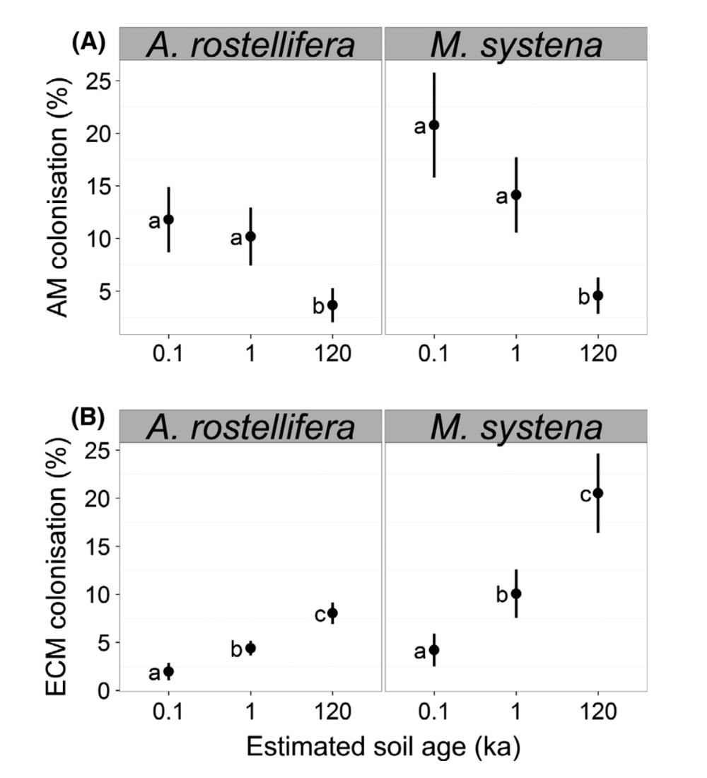 AMF and ECM root colonization as a function of soil age. Albornoz et al. 2016 .