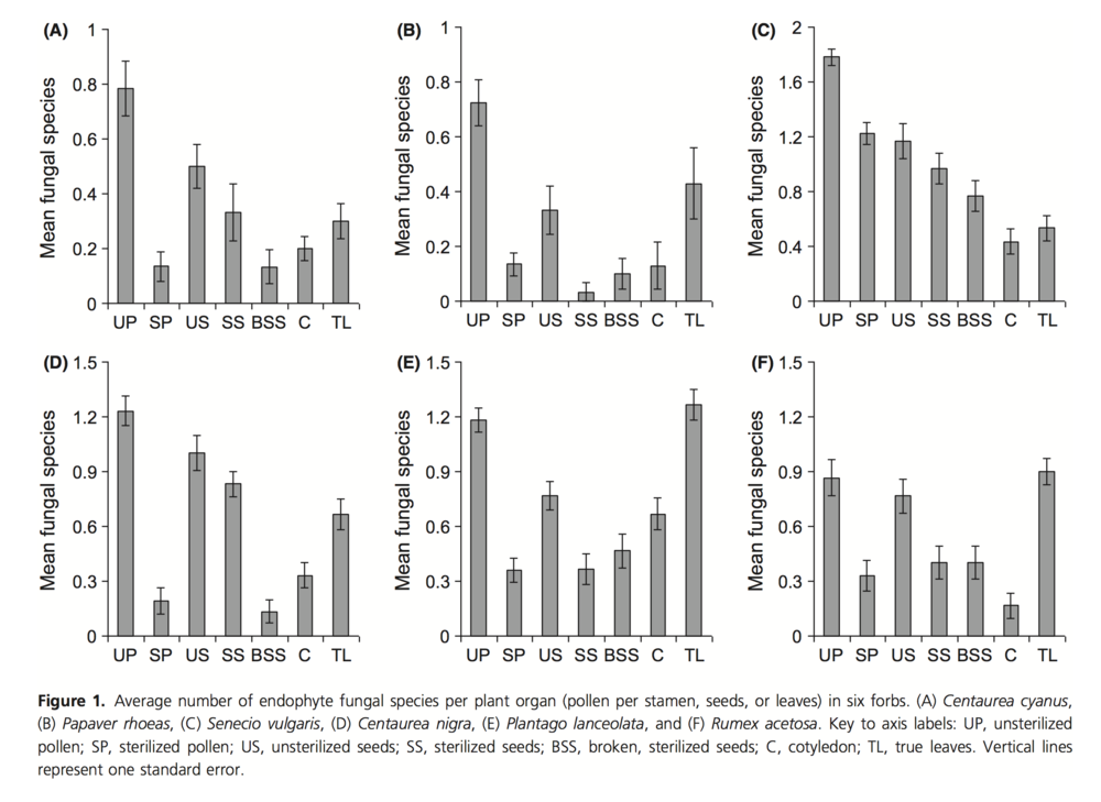 Fungal species isolated from different plant parts.  Hodgson et. al 2013 .