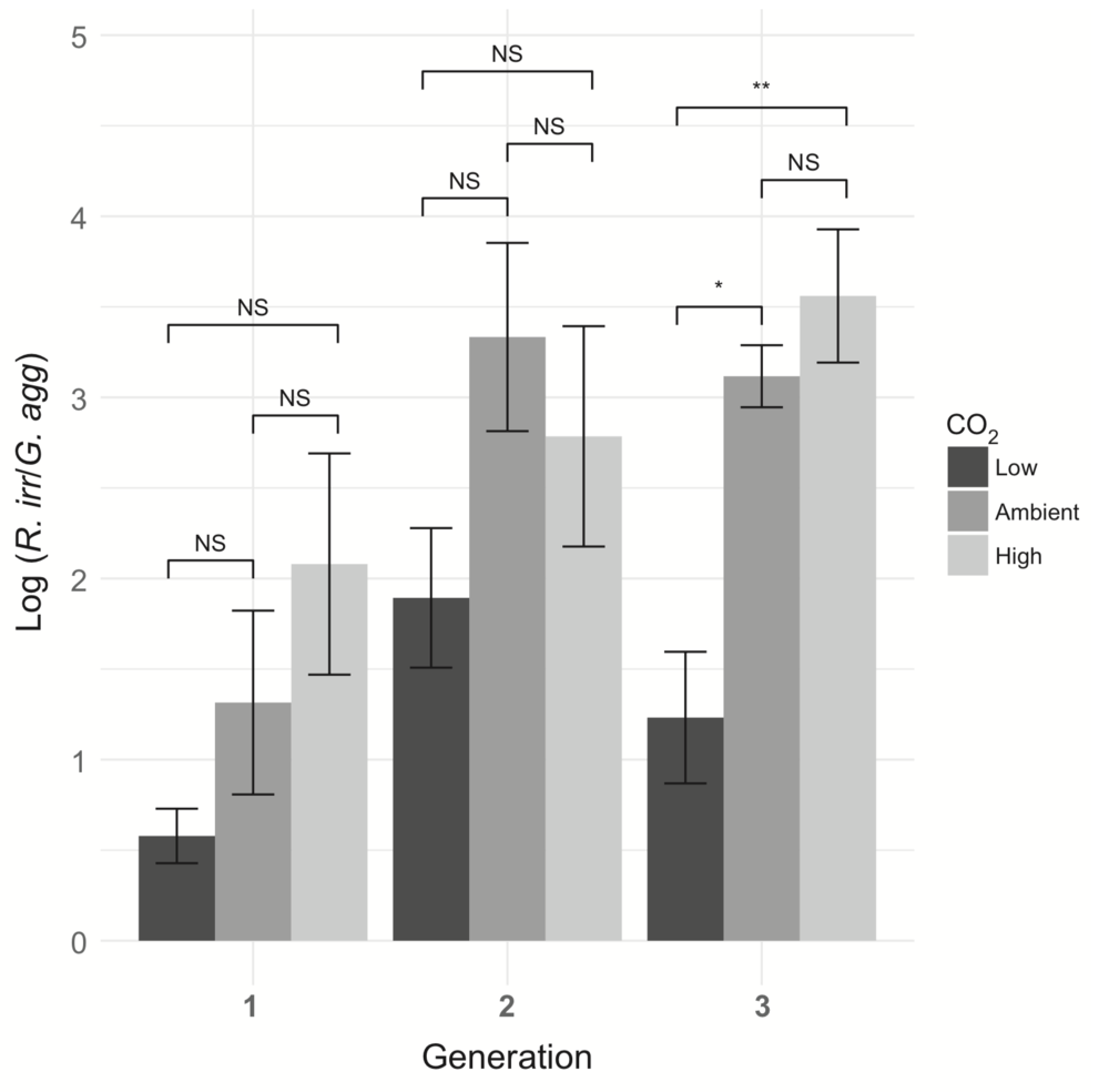 Plant selects more functional mycorrhizae   as function of enhanced CO2 concentration and subsequent plant generations.  Werner et al. 2017 .