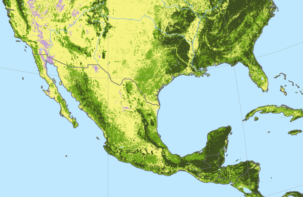 Forest connectivity between the eastern United States and northeastern Mexico.  Via global forest watch .