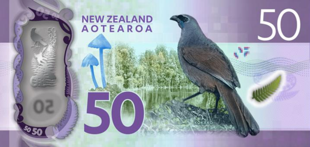 Entoloma hochstetteri  on New Zealand's fifty dollar bill.