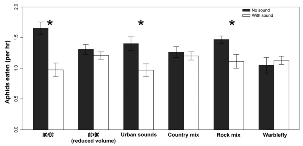 (*) signify significant interaction. AC/DC, urban sounds and rock mix reduced predation of Aphids. Barton et al. 2018.