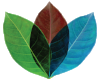 Congregation_Logo-Leaf.png
