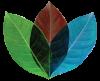 Congregation_Logo-Leaf.png