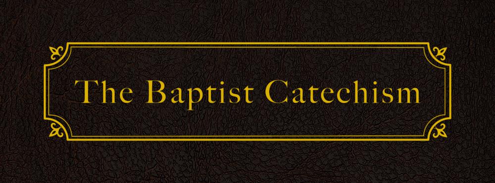 2019-Bapt-Cat.png