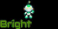 BrightWork