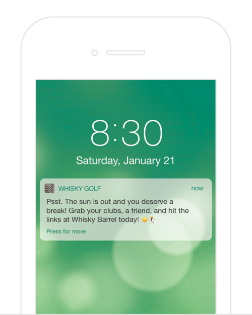 Push Notifications - Alert golfers to club promotions and updates instantly. Segment your messages to target specific customer types or interests. Create interactive messages, schedule messages, and more. Are you using the latest and greatest marketing tools to communicate to your customers?