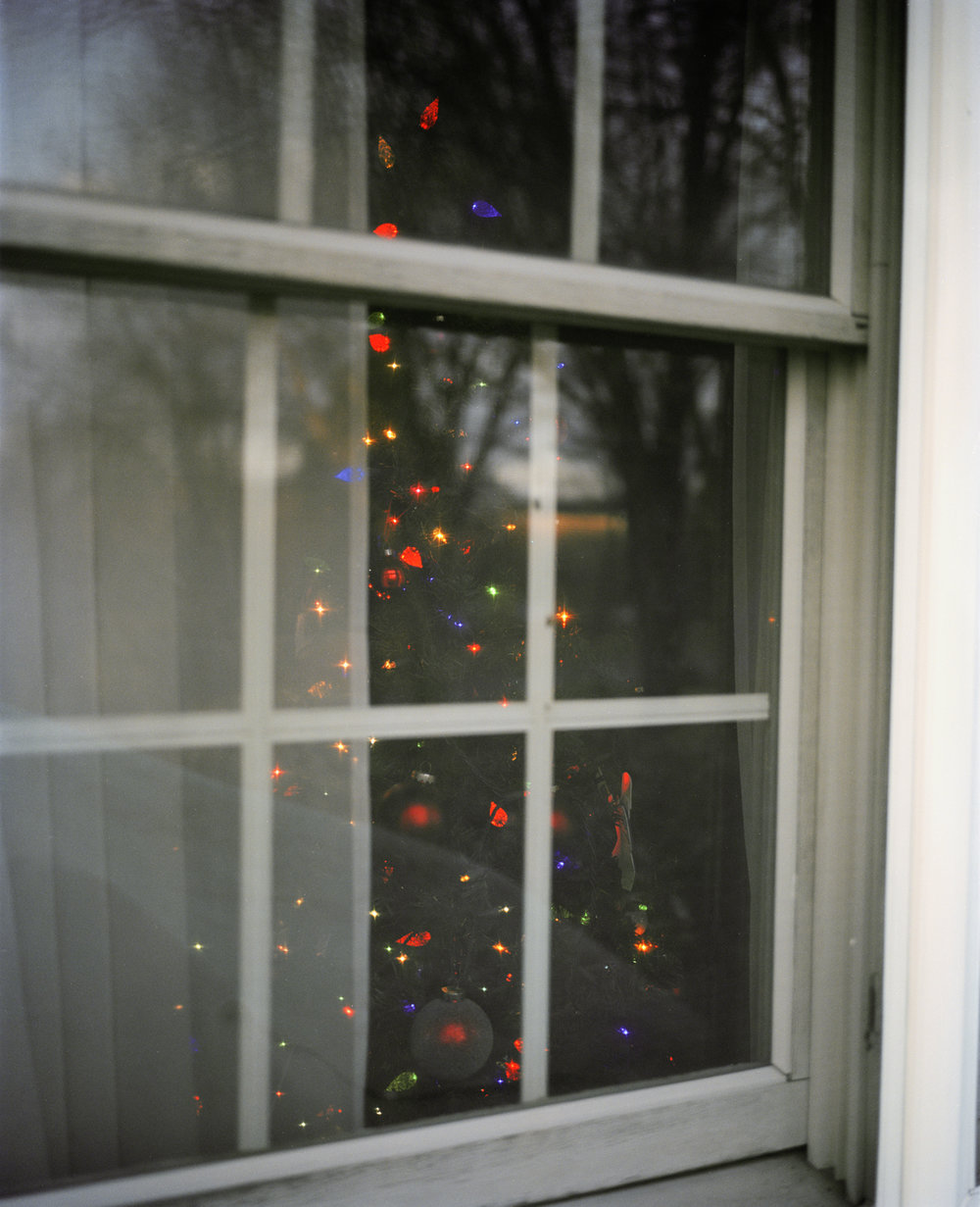 christmas  tree window().jpg