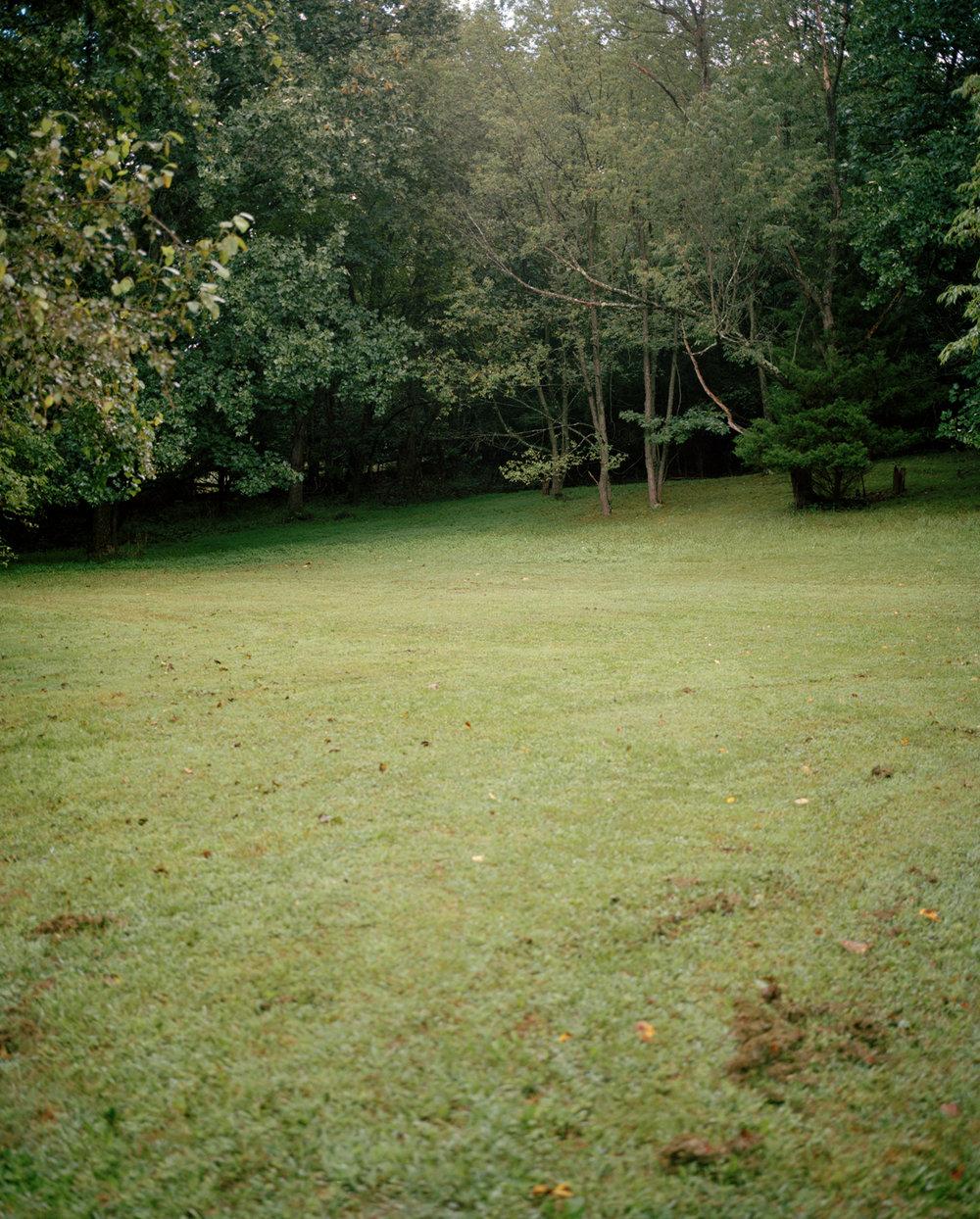10-backyard corner 2.jpg