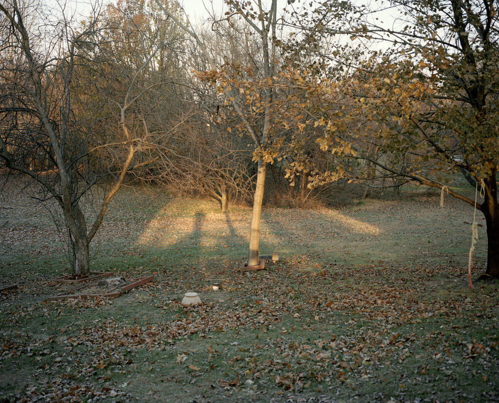 19-trees in the middle().jpg