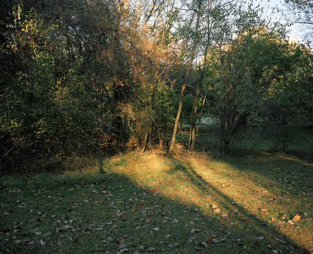 33-my backyard().jpg