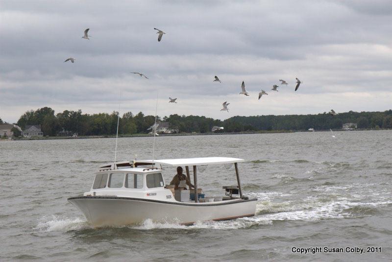 fish-boat.jpg