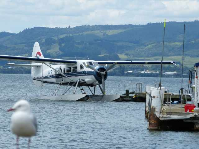 de Havilland Otter on Lake Rotorua