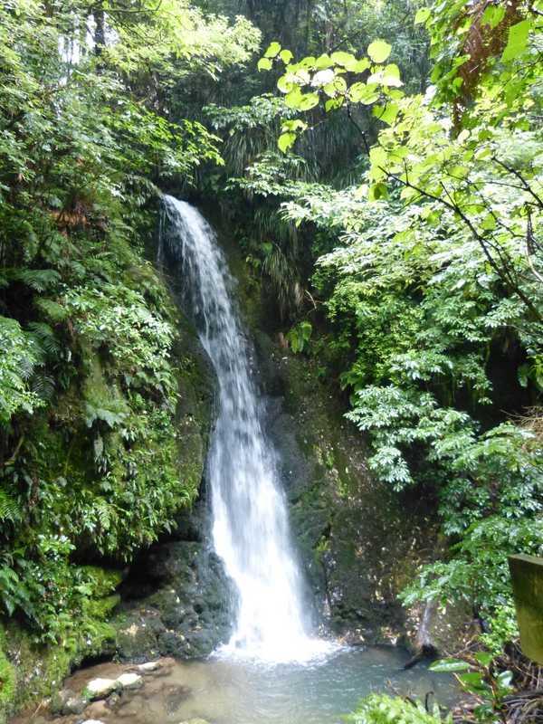 At McClaren Falls