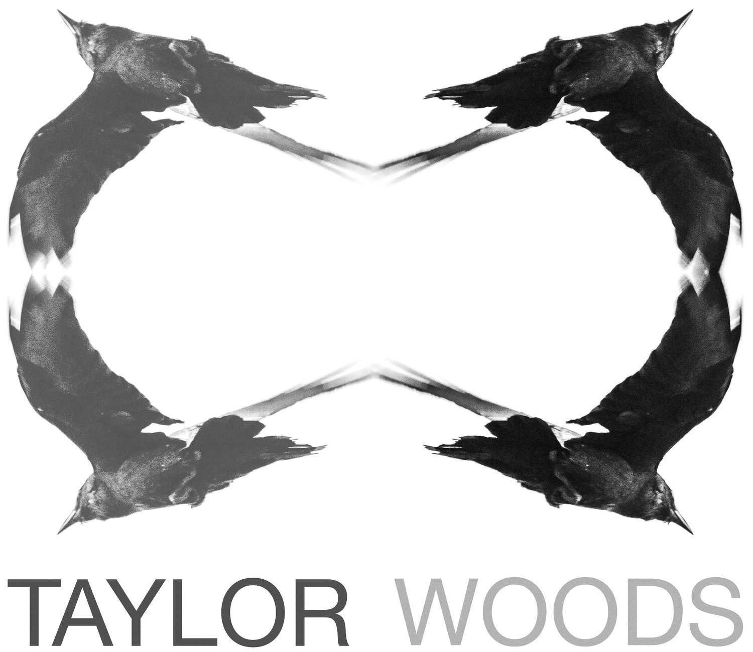 Taylor Woods