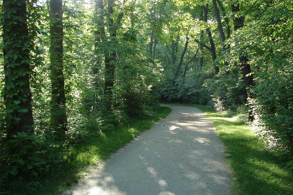Hoover-Trail-in-Summer.jpg